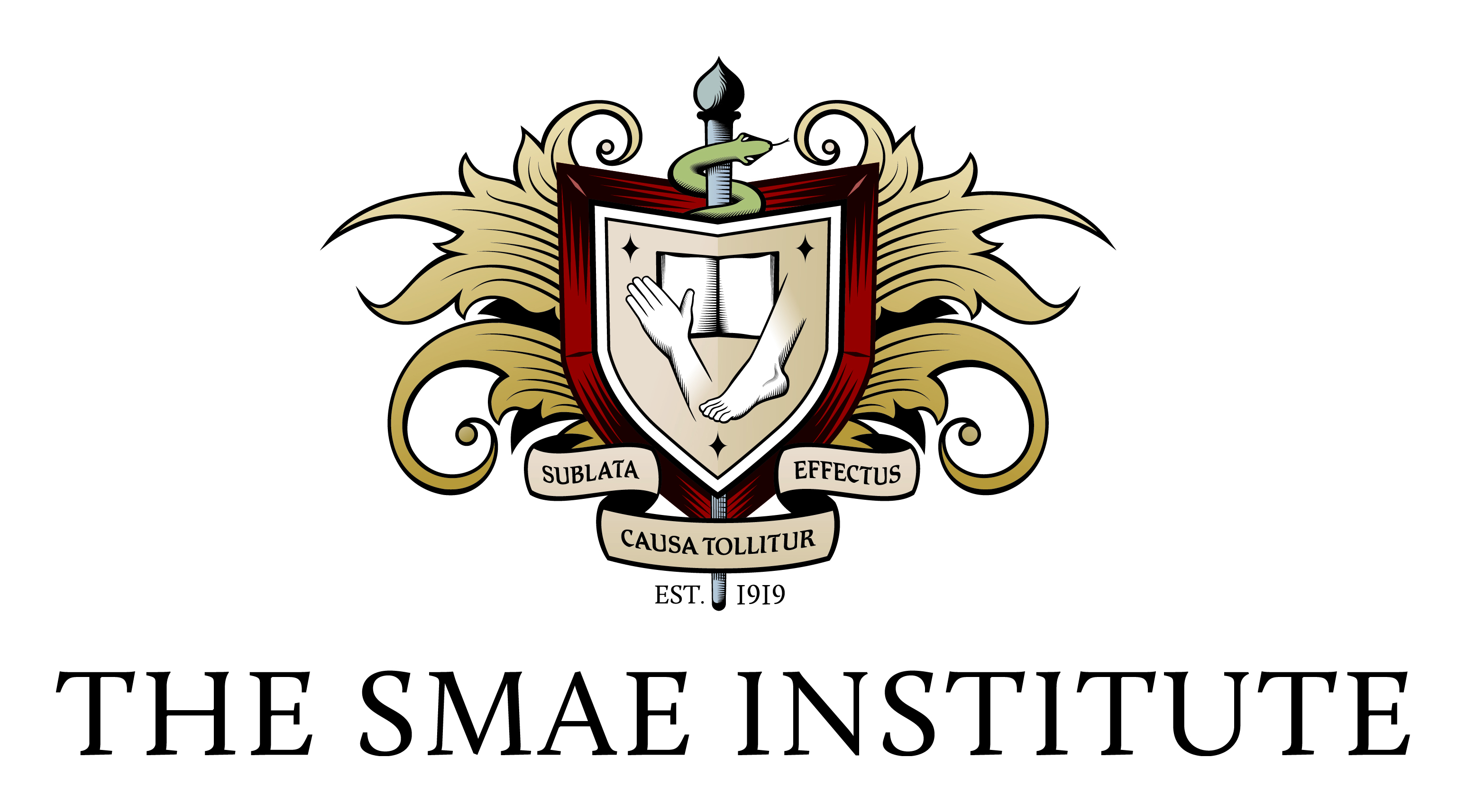 Image result for smae institute